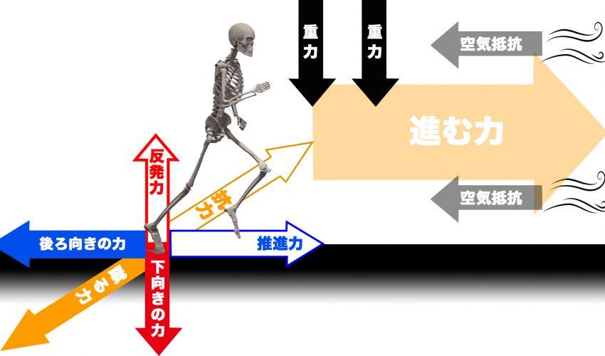 ashigahayakunaru1